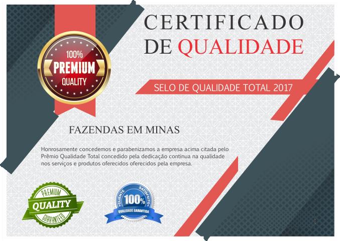 Certificado 03