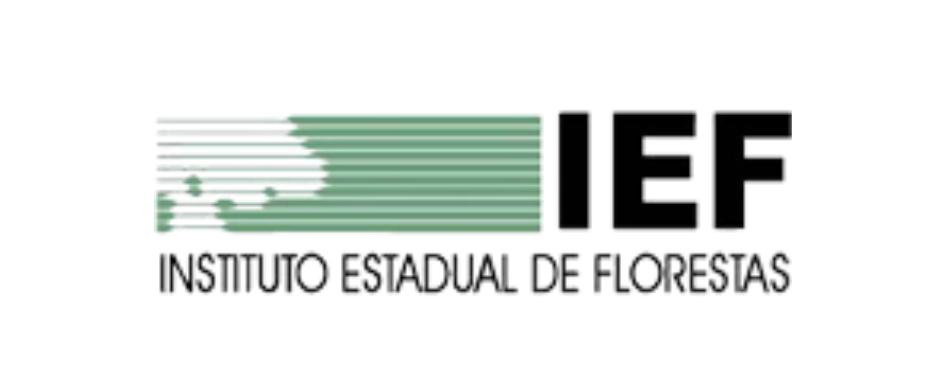 IEF Blog