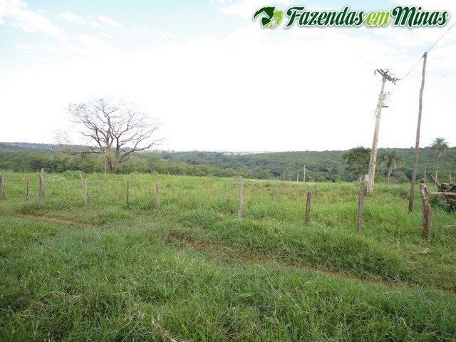 Cód.263- Brasília de Minas - MG