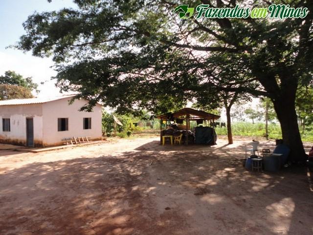 Cód 327- São João da Lagoa.
