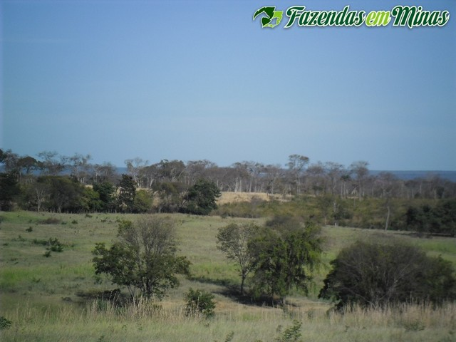 Cód.313 - Montalvânia Mg