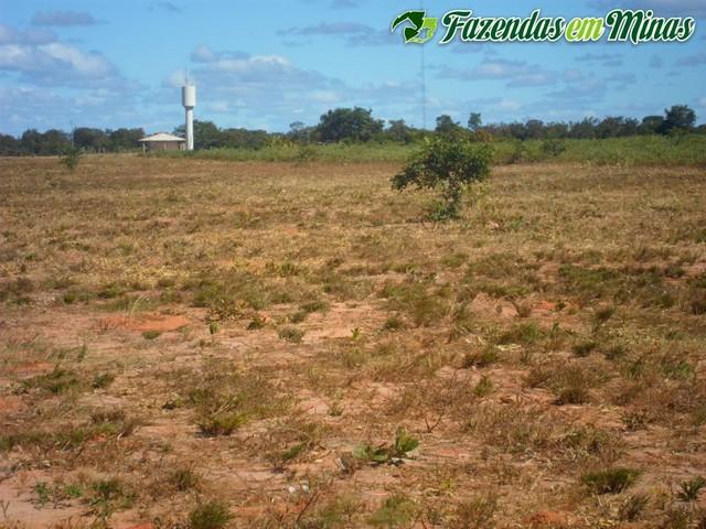 Fazenda para pecuária e irrigação.