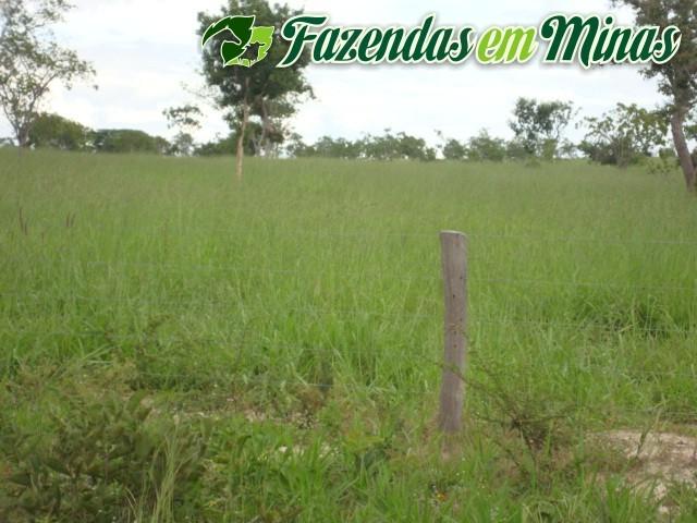 Cód.257- Buritizeiro - MG