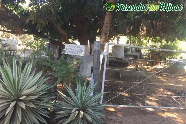 Área irrigada no projeto Jaíba